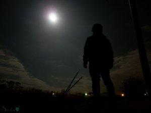 alone_in_the_moonlight_by_saliencat-d5sru33