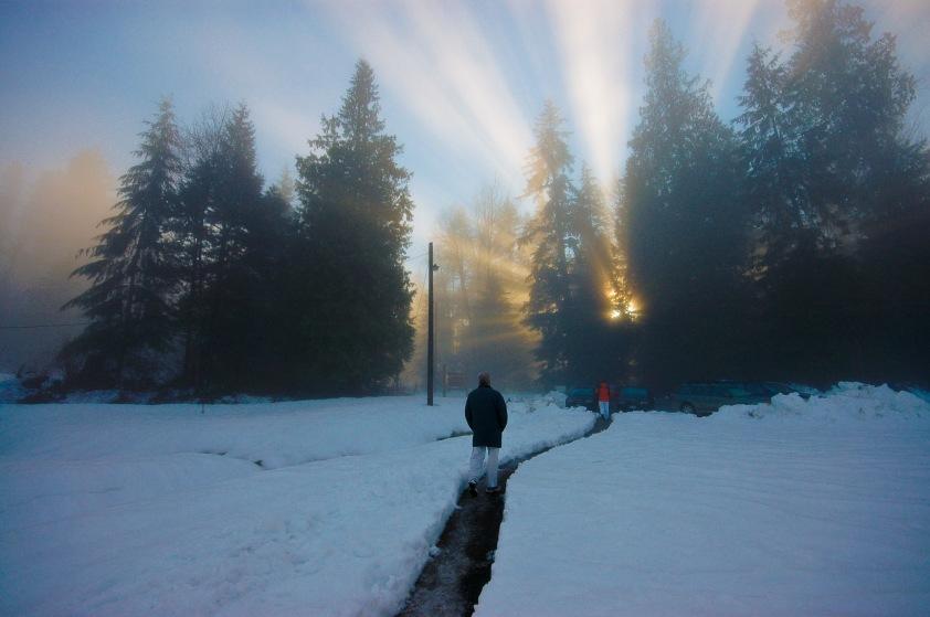CW.ST.sunlit.fog.winter2009.jpg